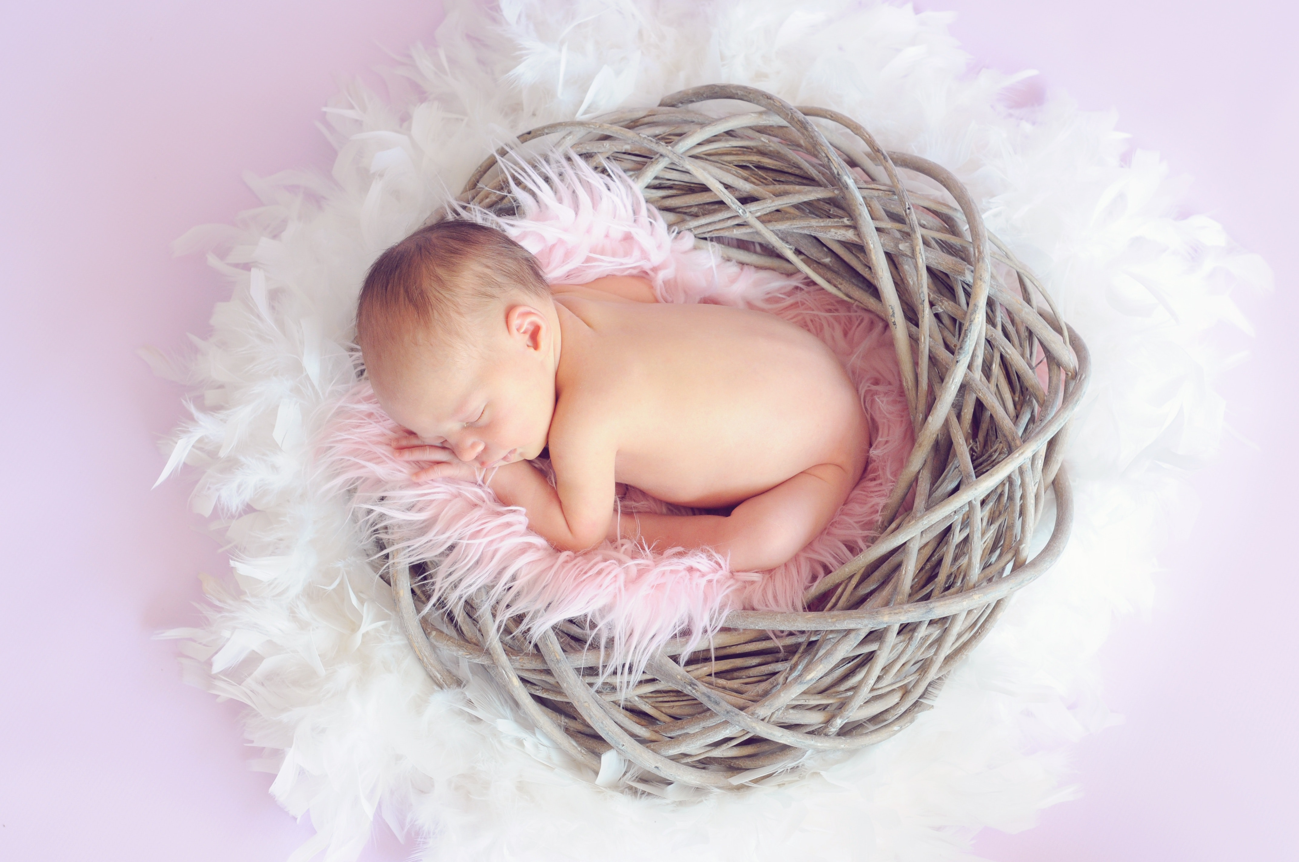 baby-sleeping-in-a-basket-and-a-round-feather-surrounding-34763